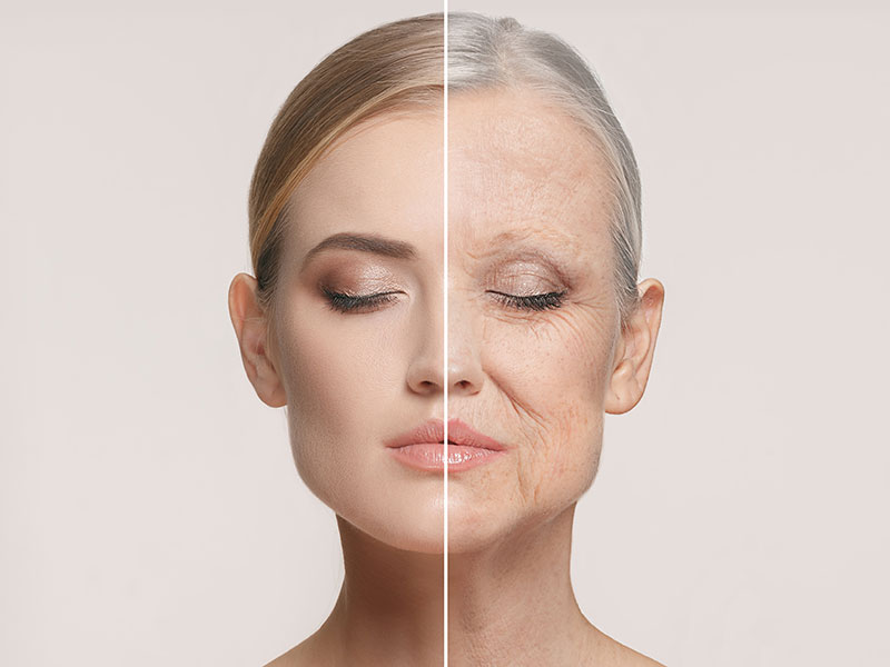 Hautalterung und Lebensweise